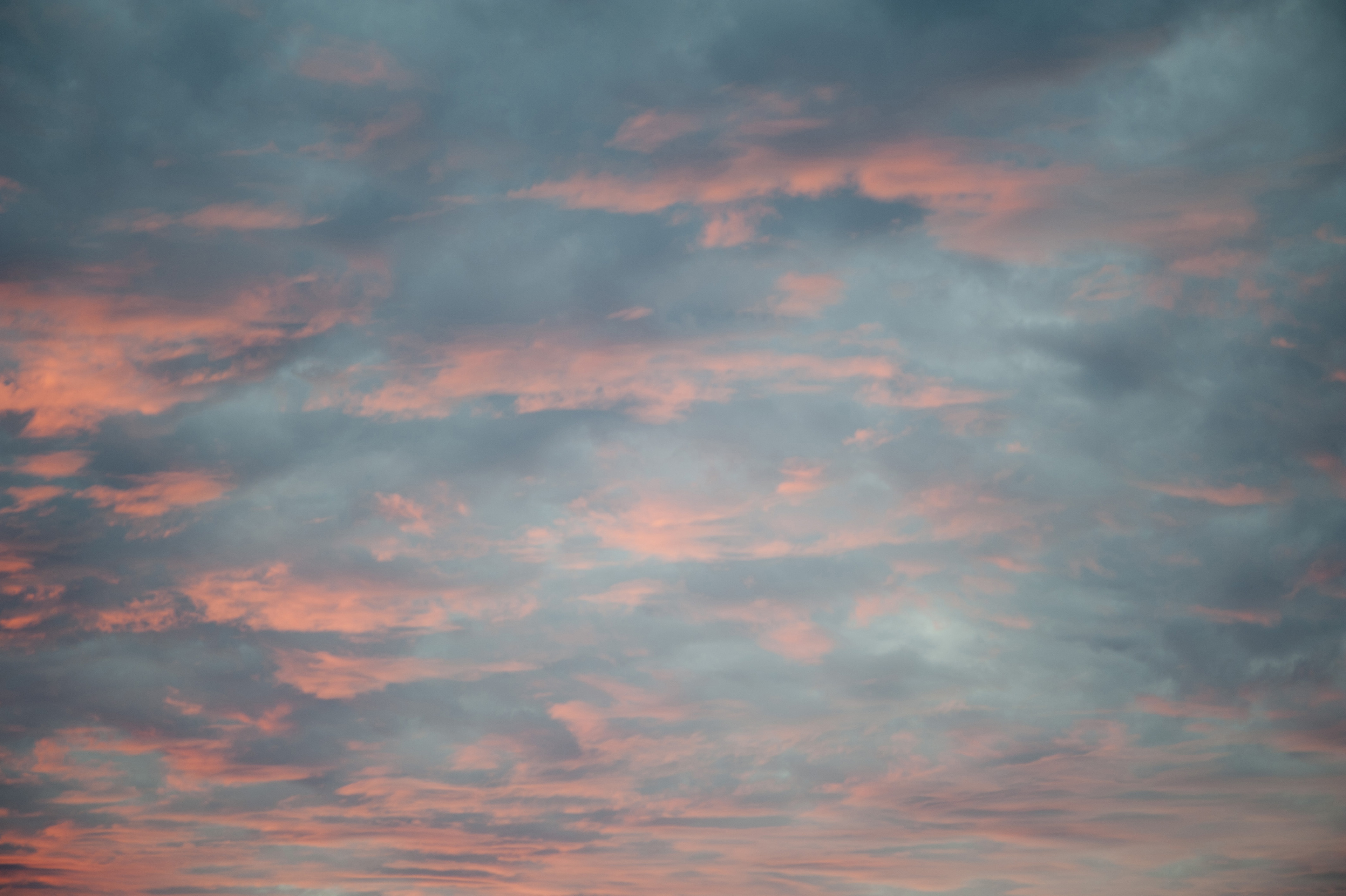 Image Of Delicate Pink Sunset FreebiePhotography
