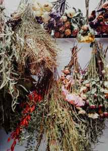 hanging bouquets of dry flowers