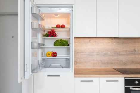 fridge with different vegetable in modern kitchen