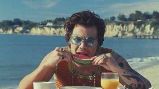 The NSFW Meaning Behind Harry Styles' Watermelon Sugar