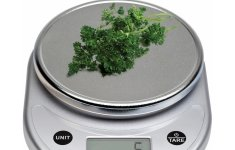 Different Types of Ozeri Kitchen Scale That Abound With Charm Elegance