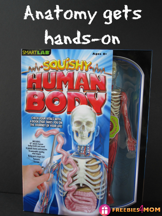 Anatomy gets hands on