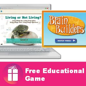 Freebie Brain Builders Learning Game