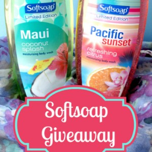 Softsoap Body Wash Winner
