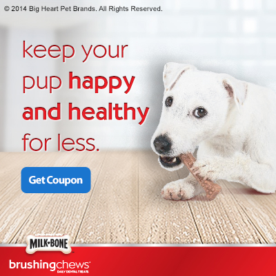 Milk-Bone® Brushing Chews™ at Walmart