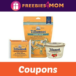 Save on Tillamook Cheese & Greek Yogurt