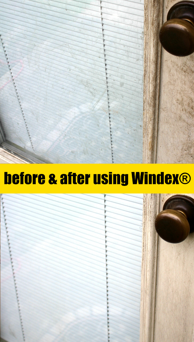 Spring Cleaning Door to my Backyard with Windex® Brand from Walmart