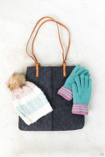 Tote Bag + 2 Winter Accessories $19.99