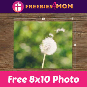 Free 8x10 Photo & Shipping from Snapfish