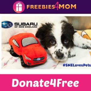 Donate4Free: Subaru Loves Pets