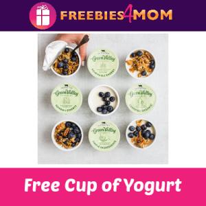 Free Green Valley Creamery Lactose Free Yogurt
