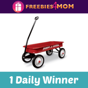 🛴Sweeps Radio Flyer Playing at Home