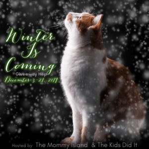2019 Winter is coming giveaway hop