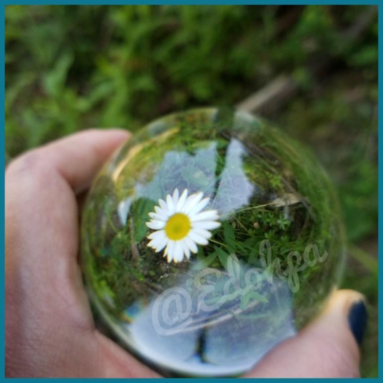 photo lens ball