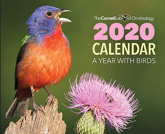 Request for a Free 2020 Bird Calendar (Valid Until 7/21/19)