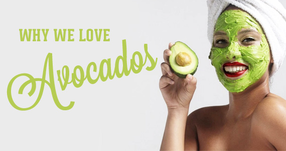 Why We Love Avocados and You Will Too