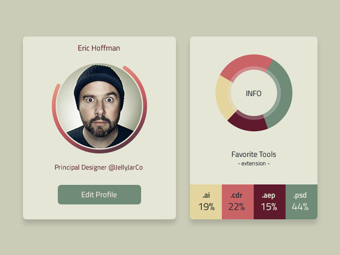 User Profile and Infographic UI PSD