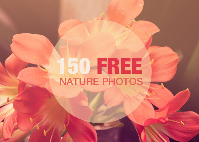 150 Free Beautiful high-resolution Nature Photos
