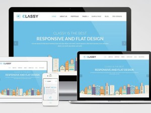 ClassyLite : Free Responsive Business WordPress Theme