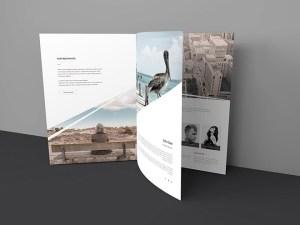 Free Three Page Brochure Mockup PSD