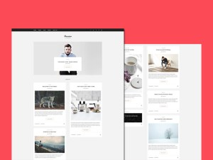 Damiao : Clean Blogging PSD Template