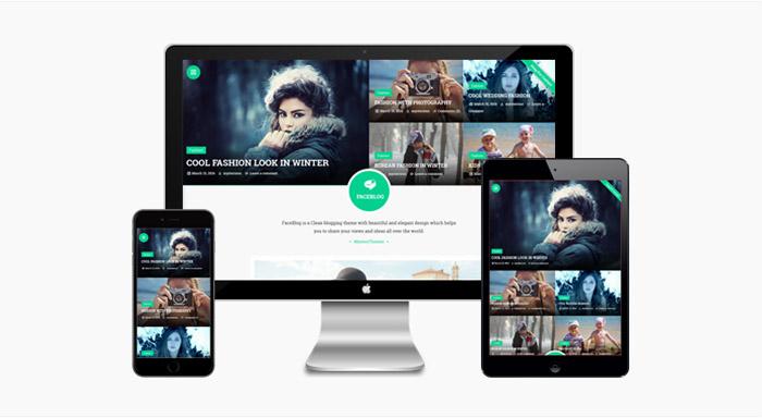 FaceBlog : Elegant Blogging WordPress Theme