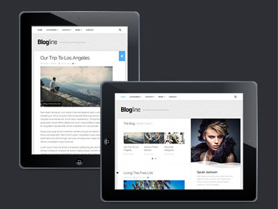 Blogline : Classic Blog WordPress Theme