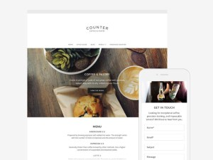 Counter Wordpress Theme