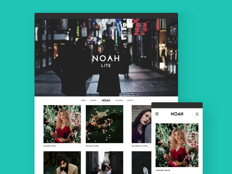 Noah Lite – Free Photography WordPress Theme