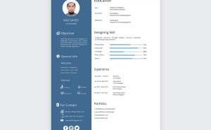 Free Basic Resume Template PSD