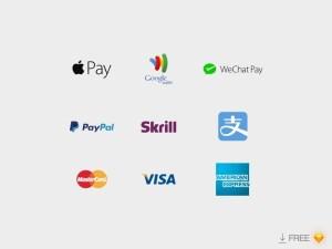 Payment Logos Template