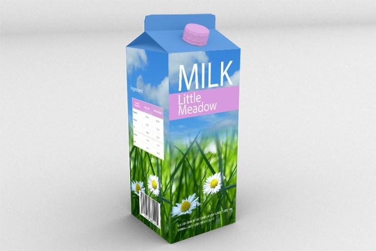 Free Milk Box Mockup PSD