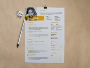 Free Creative Business Resume Template