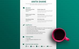 Free Fresh Elegant Resume Template