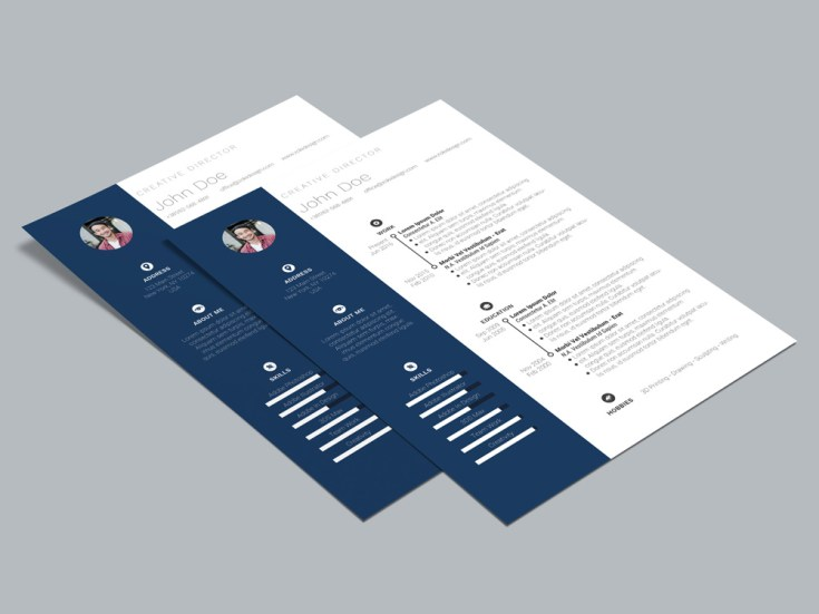 Free Simple Elegant CV Template