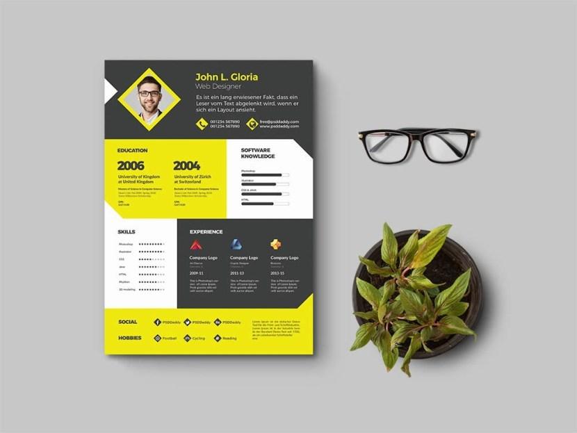 Free Clean Designer Resume Template