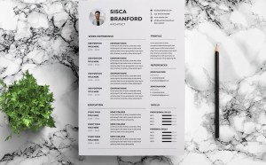 Free Architect CV Resume Template