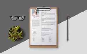 Free Set Designer Resume Template