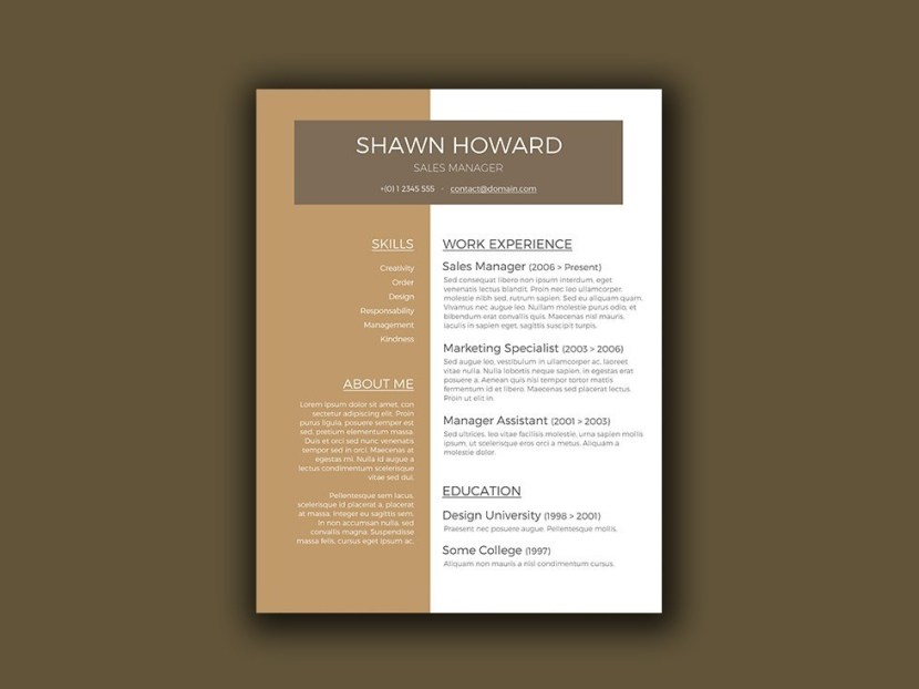 Free Creative Resume Template for Sales Manager