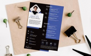 Free Designer Resume Template Set