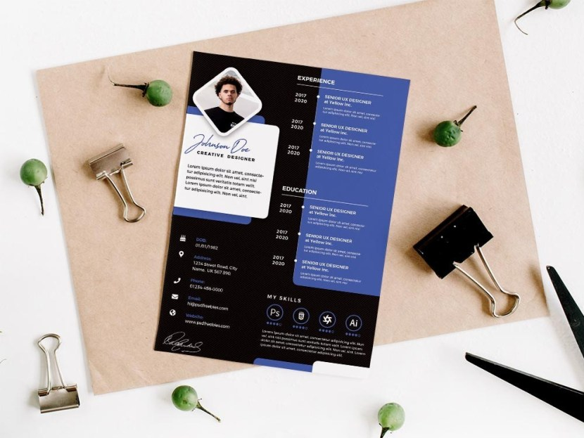 Free Designer Resume Template Set