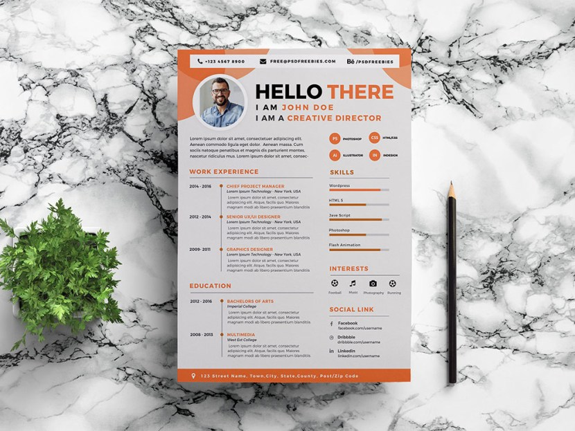 Free Designer CV Resume Template