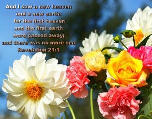 BIBLE VERSED (5)