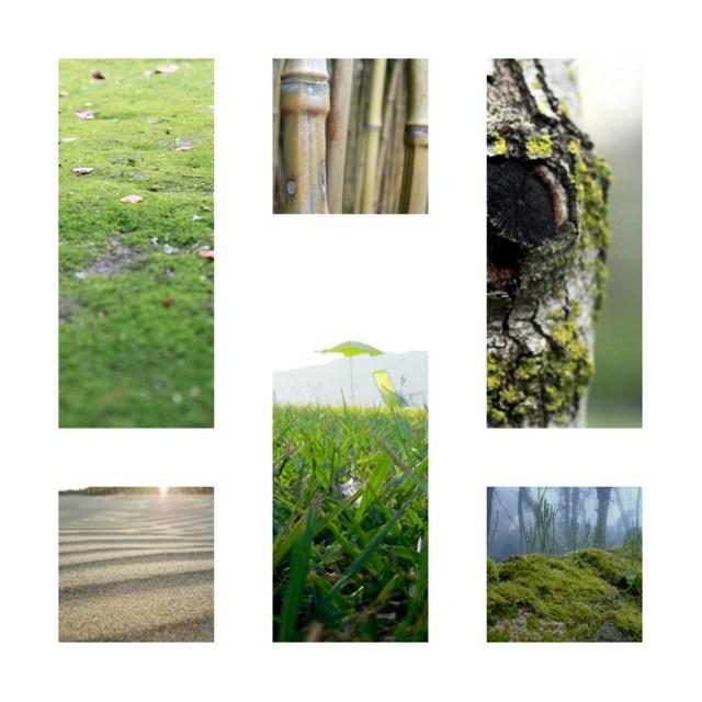 15-Free-Nature-Photos