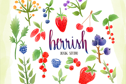 16 Free Watercolor Berries Elements