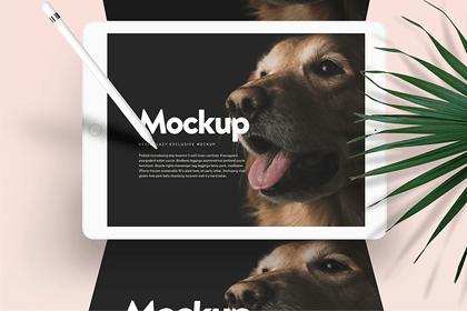 Doglr - iPad Mockup Scene PSD