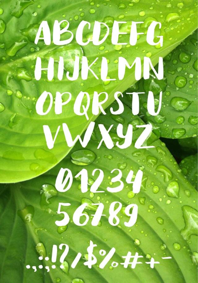 Spring Time Brush Free Typeface