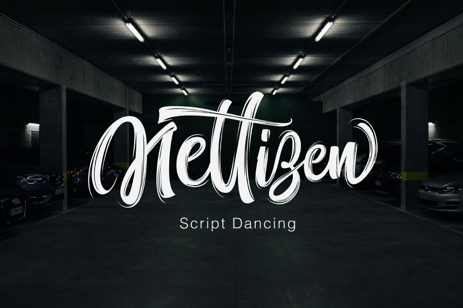 Nettizen Brush Font Demo