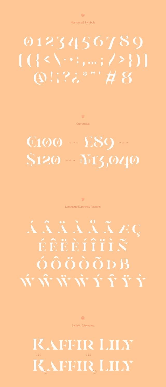 Casa Stencil Free Typeface