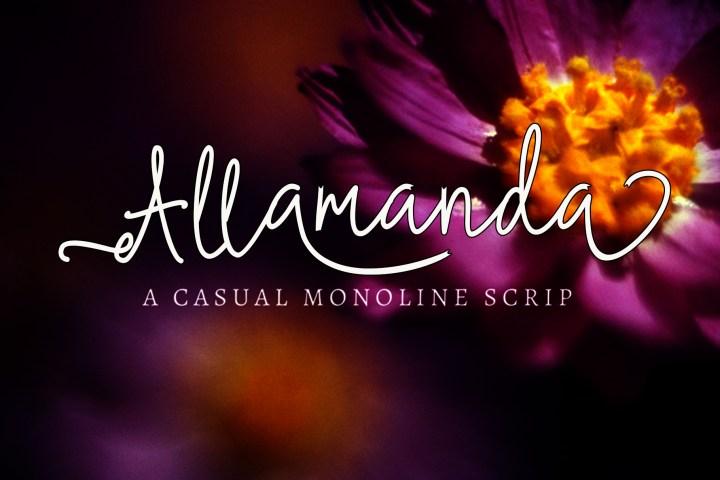 Allamanda Monoline Font Demo